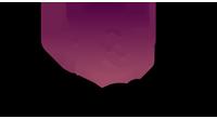 RoadChimp logo