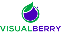 VisualBerry logo