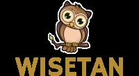 WiseTan logo