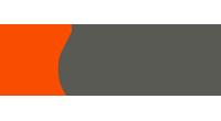 Nervi logo
