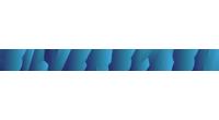 SilverSlash logo