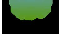 DualTree logo