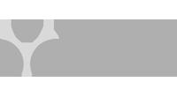Yogvy logo