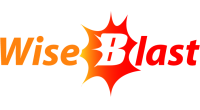 WiseBlast logo