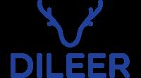 Dileer logo